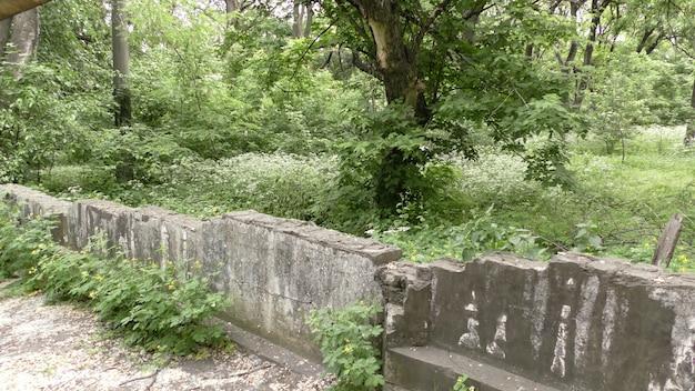 古い放棄された公園のフェンスを破壊した