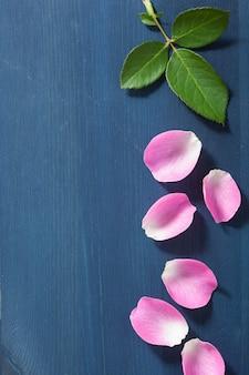 暗い青色の背景にピンクのバラの花びら