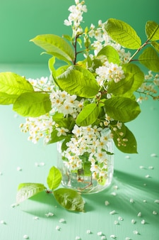 Черемуха в вазе на зеленом столе