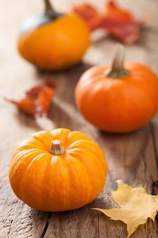Декоративные тыквы и осенние листья на хэллоуин