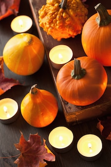 Декоративные тыквы и свечи на хэллоуин