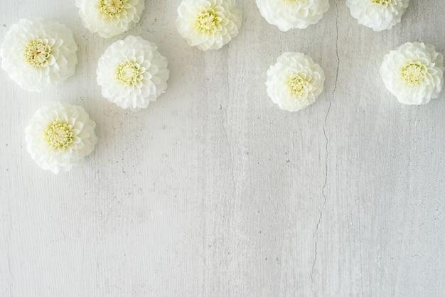 白い花のボーダー、コピースペース、テキスト用の空のスペース