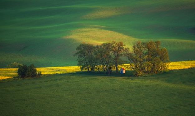 日の出の南モラヴィアの風景と農地