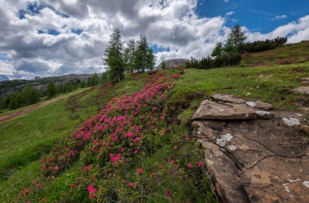 ファルザレの上の山の風景