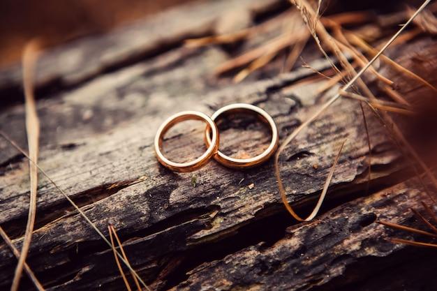 Обручальные кольца. украшения из белого и желтого золота. обручальное кольцо на деревянной текстуре. деревянный пень
