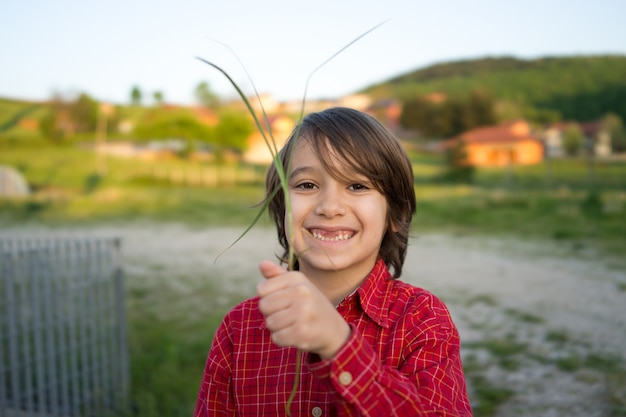 タンポポの草原に小さなかわいい男の子