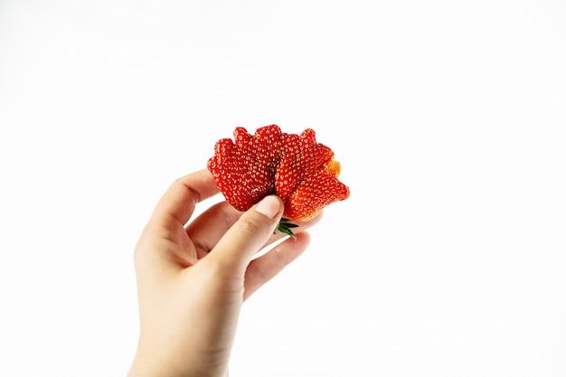 Рука красная уродливая клубника на белом фоне с копией пространства