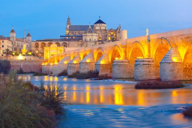 Ночная мескита и римский мост в кордове, испания