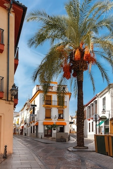 Солнечная улица в кордове, испания