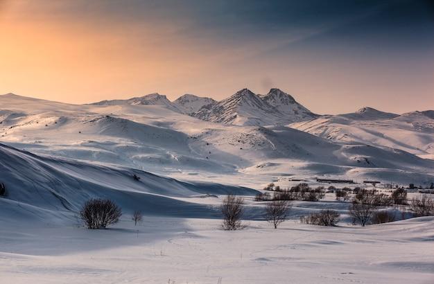 山の美しい冬