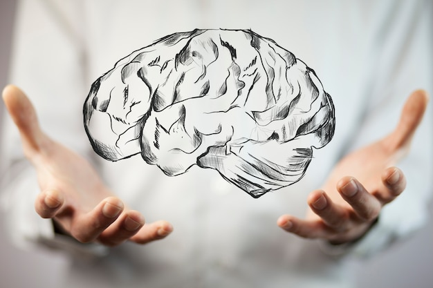 Бизнесмен рука держит мозг