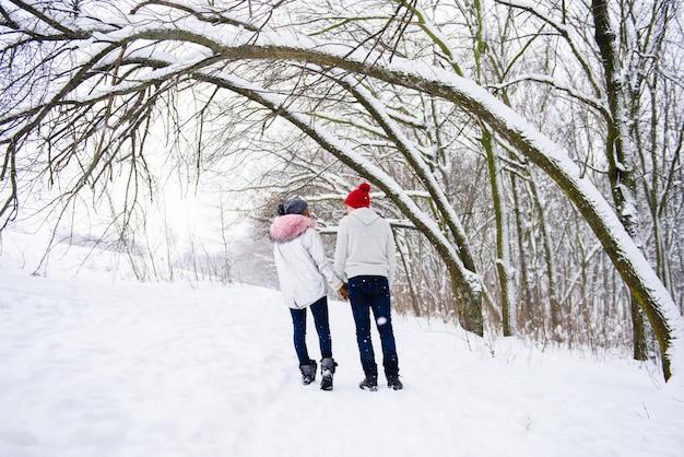 冬の屋外で後ろから愛のカップルのビュー