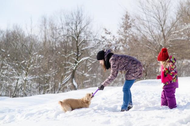 女性と彼女の娘は雪の森で犬と遊ぶ