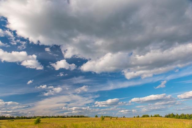 Поле с белыми облаками в голубом небе летом