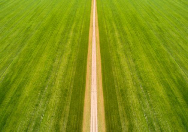Дорога посреди поля взята сверху беспилотником