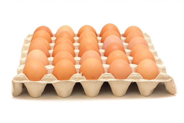 Большой защитный контейнер с коричневыми яйцами на белом