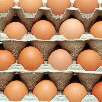 Ряд сырых яиц в защитной таре. промышленность