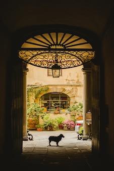 Красивая арка с собакой. симметричная композиция с собакой во флоренции. друзья в старом городе.