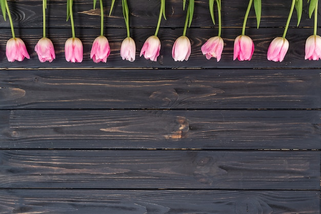 Ряд розовых тюльпанов на деревенском деревянном фоне