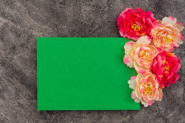 コンクリートの背景に美しい花牡丹。グリーンカードのコピースペース