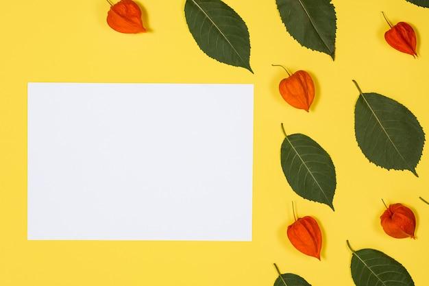 新鮮な緑の葉とホオズキと黄色の背景に白いシート嘘左