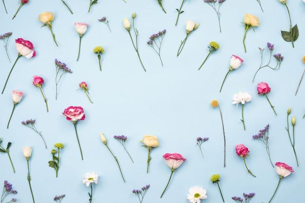 Разноцветные цветы выложены цветы на синем фоне