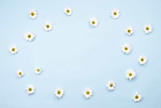 テーブルに新鮮なカモミールの花で作られたフレーム。コピースペース、青い背景の空