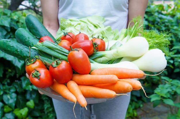 女性はサラダの材料、レタス、トマト、キュウリ、フェンネル、ネギ、ニンジンを保持しています