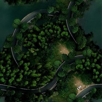 Зеленый узор с текстурой леса и дороги. вид с дрона