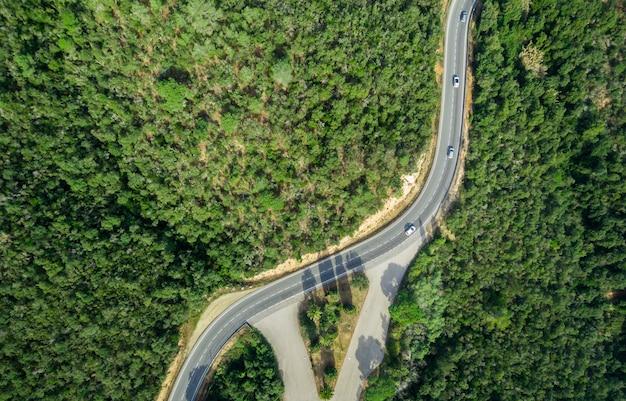 森の真ん中にカーブがある道路の空撮