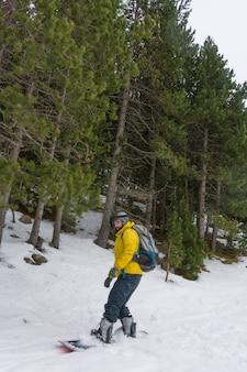 雪を楽しむフリーライダー
