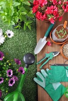 Садовые инструменты на траве и деревянный стол с различными видами растений