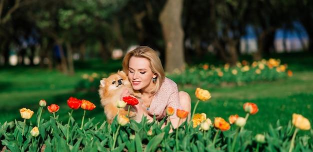 魅力的な若い女性は犬のスピッツを外に押しながらカメラに笑顔、公園を散歩しています。