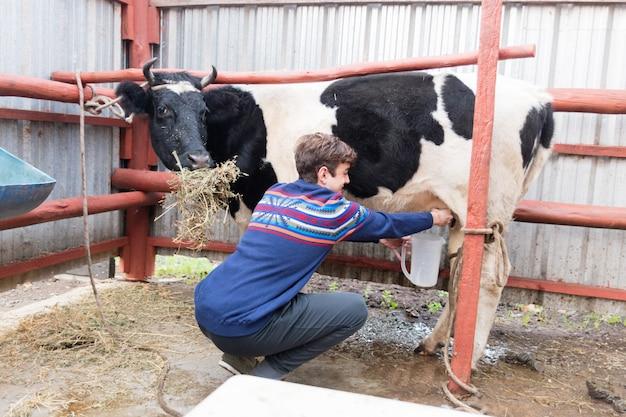 Фермер доит корову