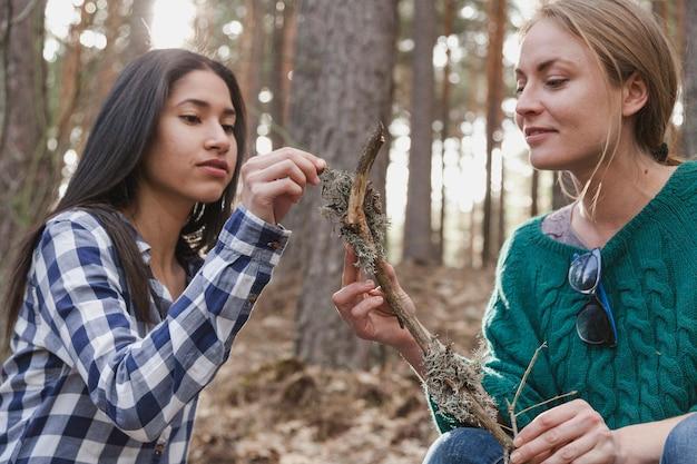 若い女性は、枝を見て、注意深く