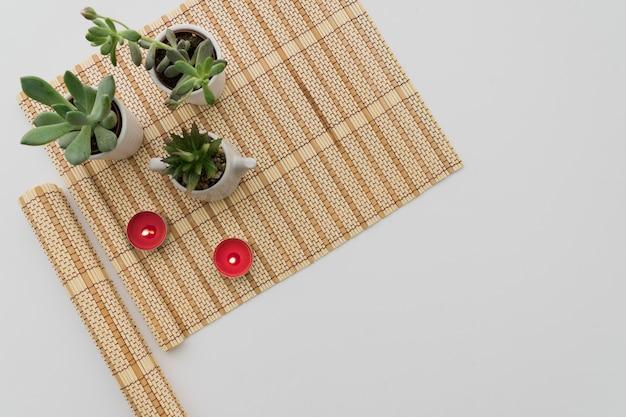 Бамбуковый стол с растениями и свечами