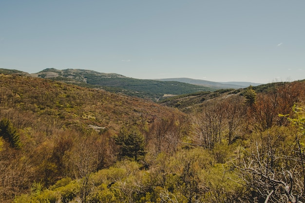 Вид на холмистый пейзаж