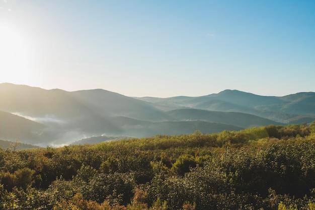Холмистый пейзаж с травой на переднем плане