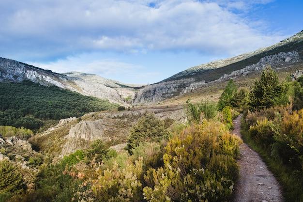 Дикий холмистый пейзаж