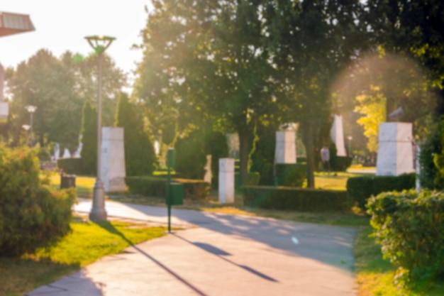 夏期の公園の通路