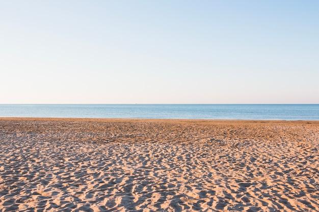 小さな砂丘のある空のビーチ