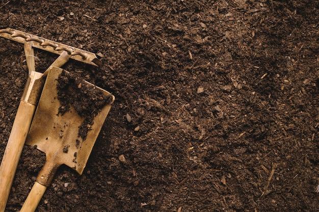 Концепция садоводства с лопатой, грабли и пространство справа