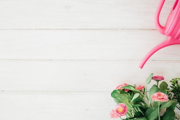 Полив может и цветок с пространством слева
