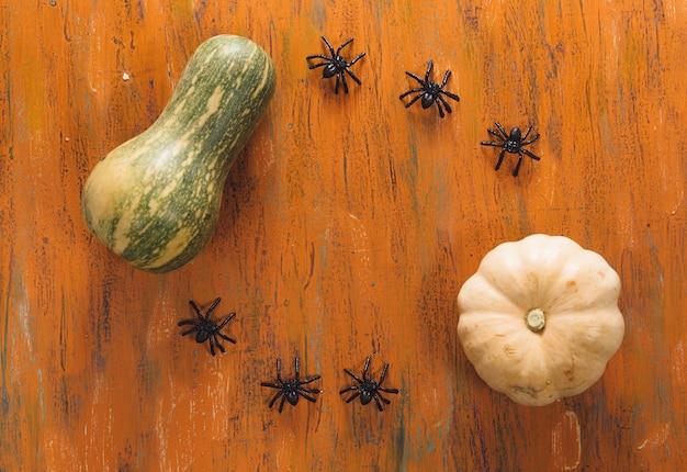カボチャのスカッシュとテーブル上のクモ