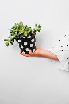 鉢植えの子供を保持する子供