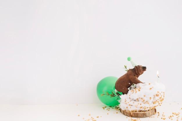 ケーキ登るクマ
