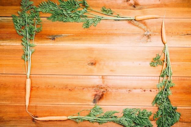 Кадр из моркови