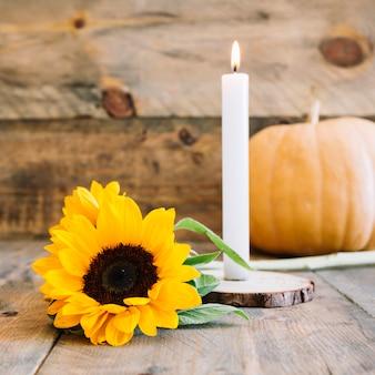 ひまわりとろうそくの秋の装飾
