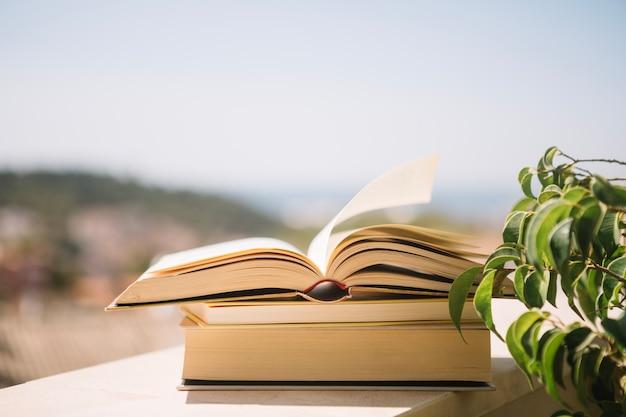 Книги на выступе