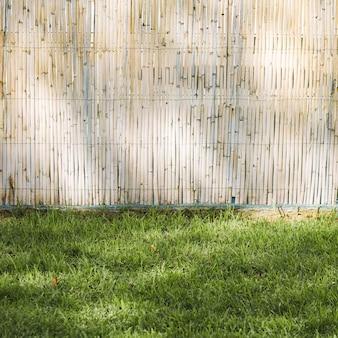 竹フェンスと草